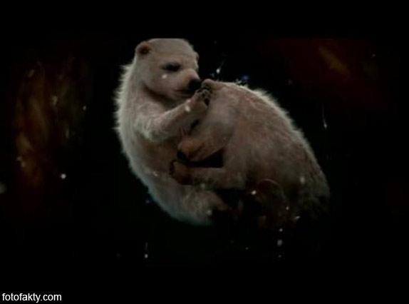 Зародыши животных в утробе матери Фото 10