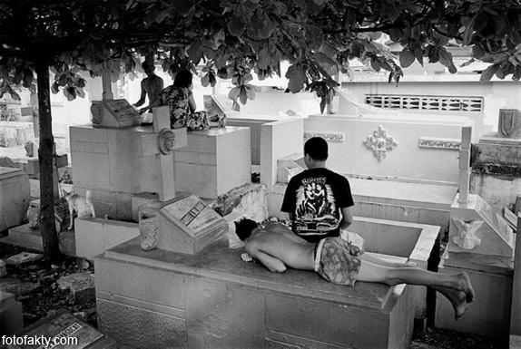Жизнь на кладбище Фото 15