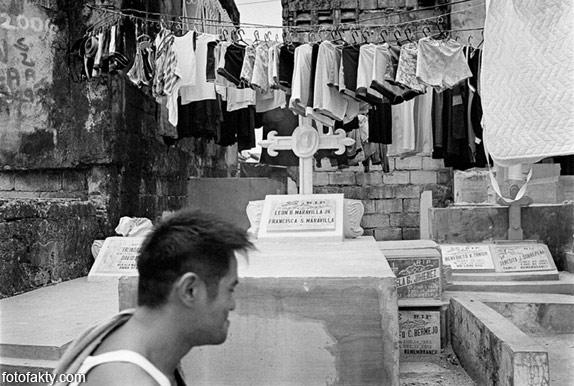 Жизнь на кладбище Фото 16