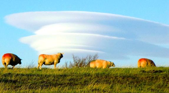 Линзовидные (лентикулярные) облака