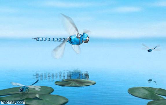 BionicOpter - реалистичный робот-стрекоза Фото 1