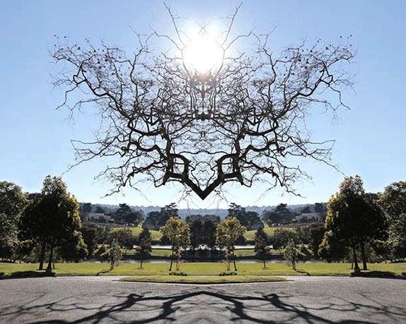 В поисках симетрии в природе