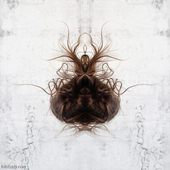 В поисках симетрии в природе Фото 11