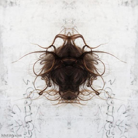 В поисках симетрии в природе Фото 12