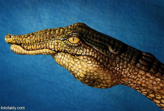 Невероятный боди-арт Гвидо Даниэле Фото 4