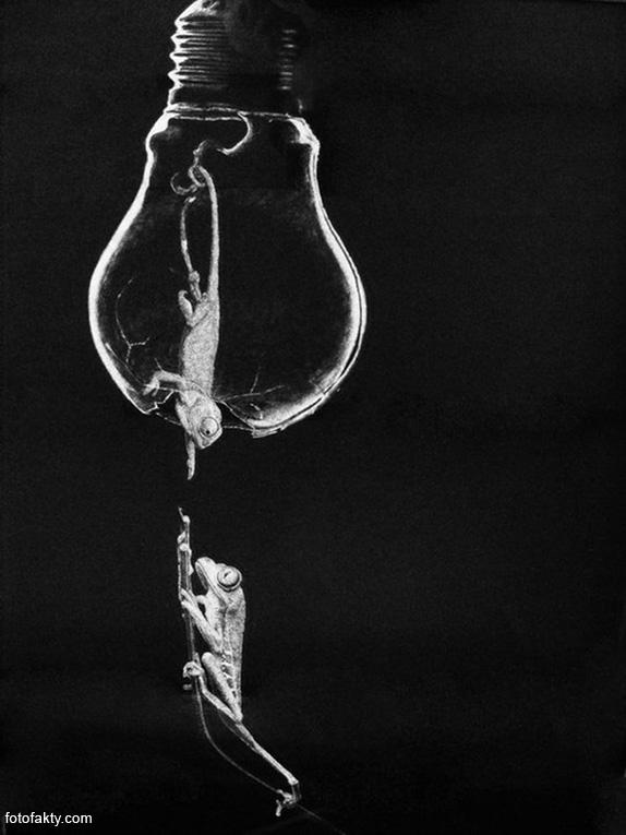 Джоно Драй и его фотореалистичные рисунки карандашом Фото 5