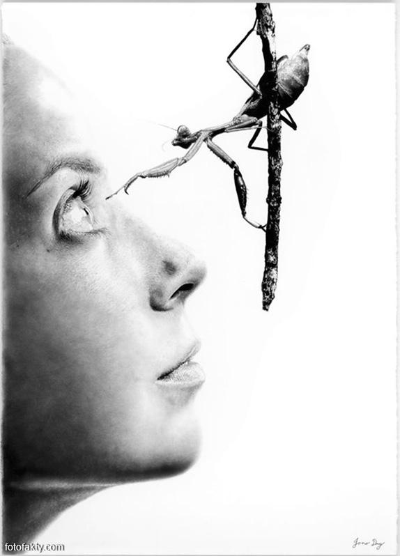 Джоно Драй и его фотореалистичные рисунки карандашом Фото 9