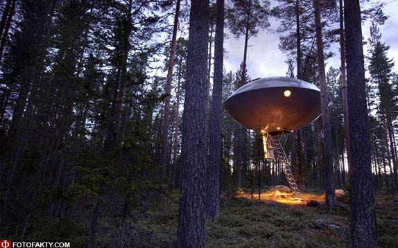 Отель на дереве фото 1