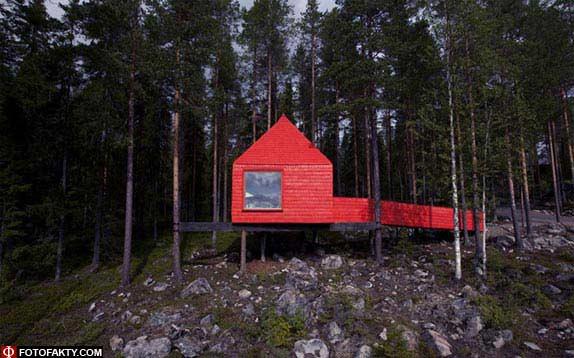 Отель на дереве фото 4