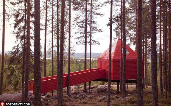 Отель на дереве фото 5