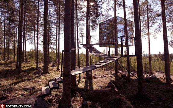 Отель на дереве фото 10