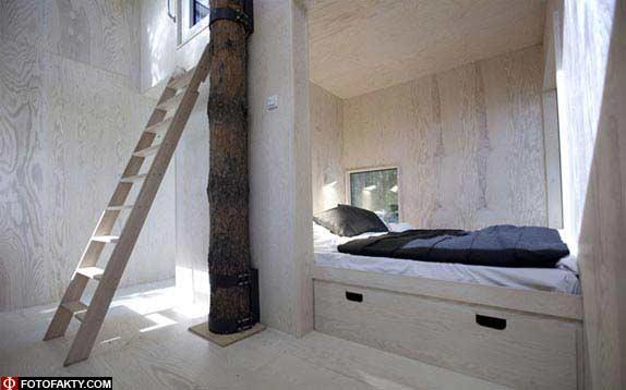 Отель на дереве фото 12