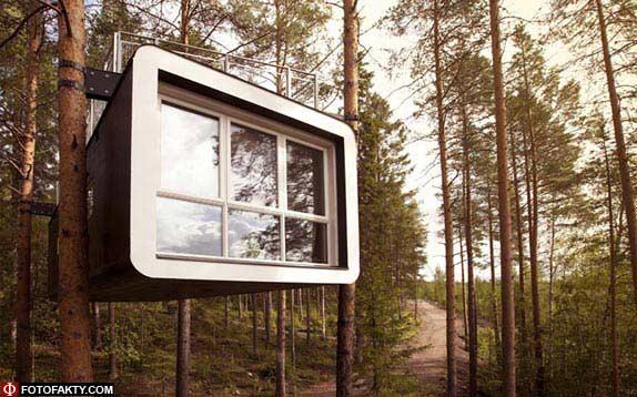 Отель на дереве фото 14