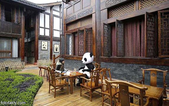 Тематический панда-отель в Китае Фото 1