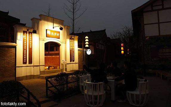Тематический панда-отель в Китае Фото 11