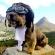 Оскар - собака путешественник